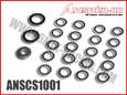 ANSCS1001-115