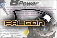 raccourci-falcon-200